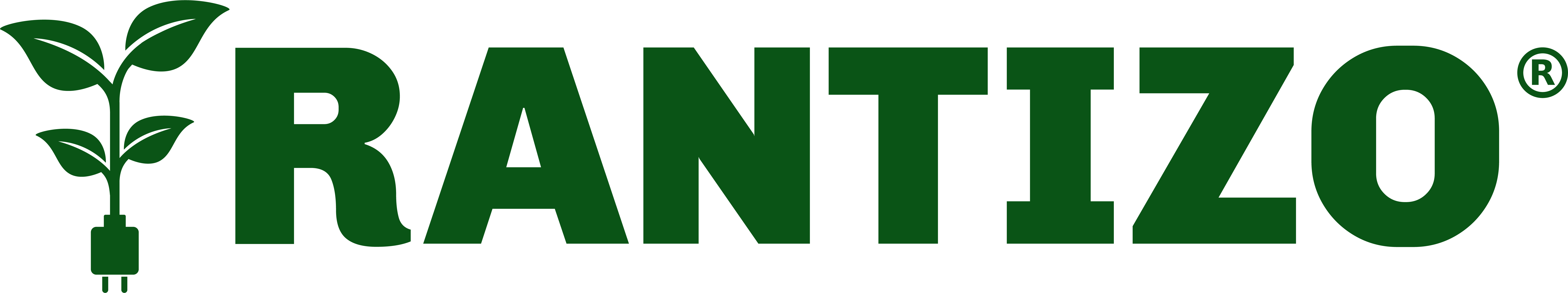 RANTIZO logo - WE DELIVER SOLUTIONS